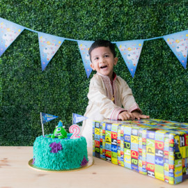 2 year old birthday baby shoot